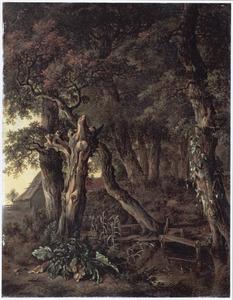 Boslandschap met een beek, op de achtergrond een boerderij