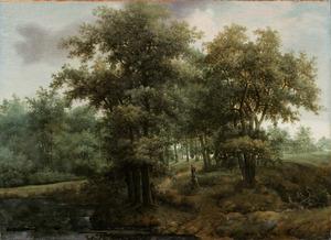 Bebost landschap met een vijver