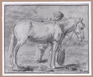 Paard met oppasser