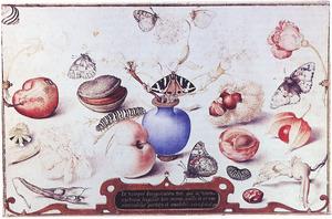 Vaas met akelei, andere bloemen en vlinders, omringd door flora en fauna