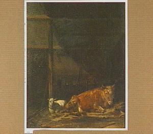 Stalinterieur met liggend vee