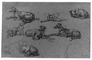 Studies van een hond