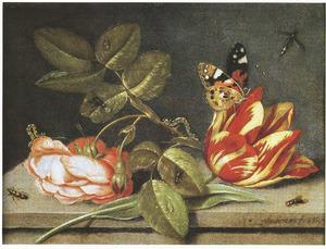 Tulp en Roos en enkele insecten op een stenen plint