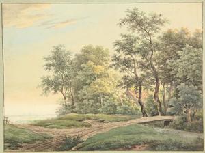 Landschap met landweg en een houten brug