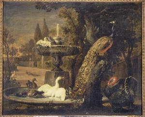 Pauw en ander gevogelte bij een fontein