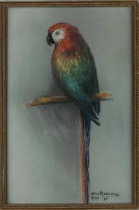 Papegaai op een stok