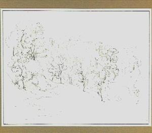 Heuvellandschap met bomen in de omgeving van Belmonte