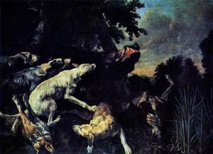 Wild zwijn aangevallen door honden