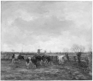 Landschap met grazende koeien