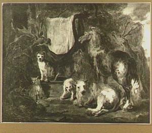 Studie van dieren: honden, vossen, herten, een paard en een rund