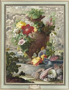 Stilleven met vaas bloemen, schelpen en een hagedis