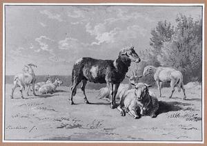 Geiten en schapen in een landschap