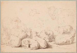 Studie van een kudde schapen