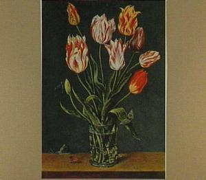 Tulpen in een glas met doornnoppen