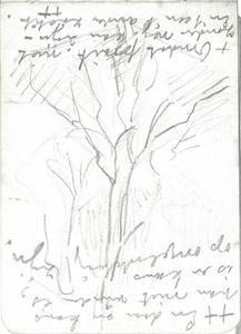 Tree (27)