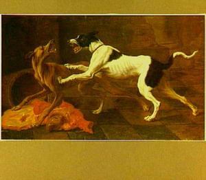 Twee honden vechten om vlees
