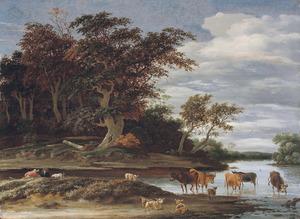 Landschap met vee in een riviertje bij een bosrand