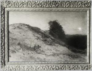 Duinlandschap bij maanlicht