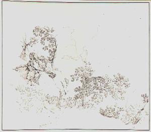 Rotslandschap met loofbomen