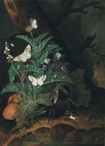 Bosstilleven met slang, hagedis, slak en vlinder