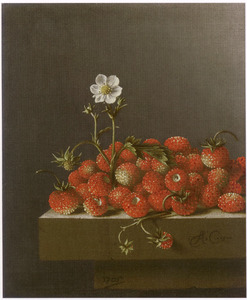 Stilleven met aardbeien