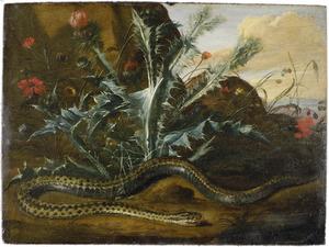Distels en een slang