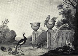Parklandschap met vogels