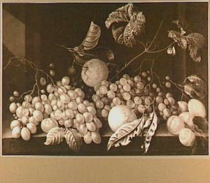Druiven en ander fruit op een stenen plint