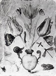 Stilleven met bloemen, insecten en een kikker