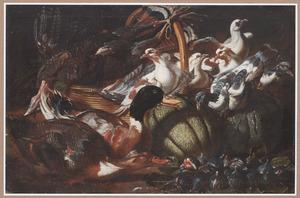 Levend en dood gevogelte en fruit