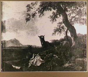 Zuidelijk landschap met geiten