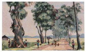 Bataviasche weg bij Buitenzorg