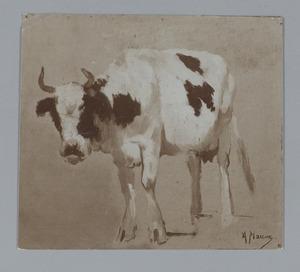 Studie van een koe