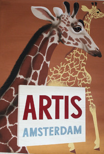 Artis-Affiche:Giraffen