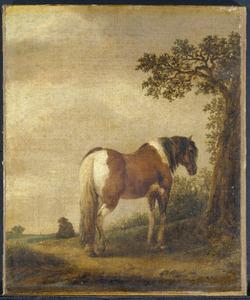 Een bont paard in een landschap