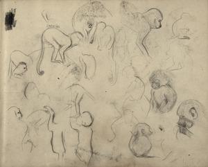 Schetsboekblad met schetsen van diverse apen, waaronder kapucijneraapje en doodshoofdaapje