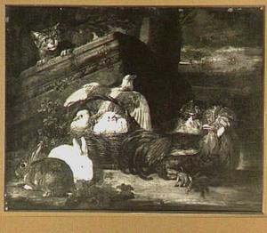 Kat op de loer bij een mand met duiven, linksvoor twee konijnen, rechts twee kippen