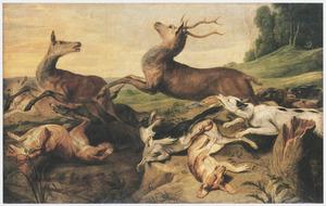 Herten, opgejaagd door jachthonden