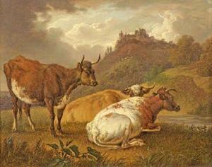 Landschap koeien met een kasteel op de achtergrond