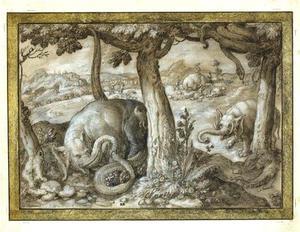Gevecht tussen olifanten en slangen