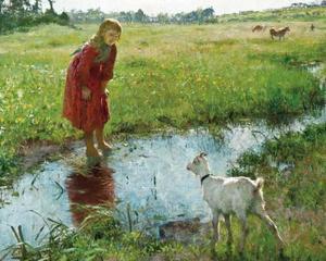 Meisje met geit