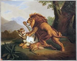 Tijger en Leeuw vechtend om een hert