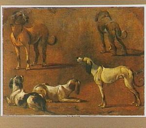 Studie van vijf jachthonden
