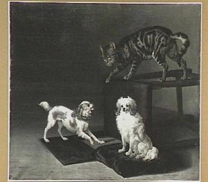 Een kat spelend met twee hondjes