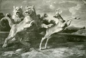 Twee jonge leeuwen vallen een reebok aan