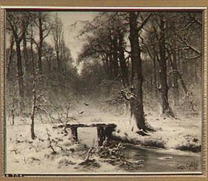 Januari avond, 1875