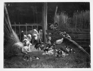 Stalinterieur met schapen, gevogelte en konijn
