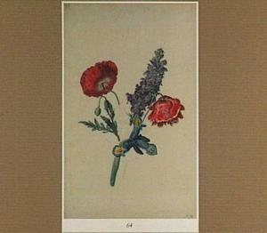 Twee klaprozen, een iris en ridderspoor