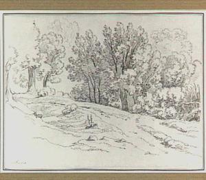 Landweg met bomen in de omgeving van Albano