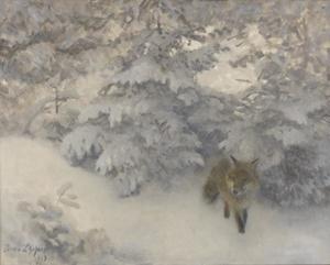 Vos tredend uit besneeuwde bosrand
